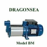Máy bơm nước Dragonsea BM