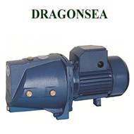 Máy bơm Dragonsea SGJW 110 (1.5Hp)