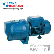 Máy bơm lưu lượng Aquatrong EJWm-1C-E (0.5HP)