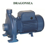 Máy bơm Dragonsea 2SCPm25/160B