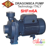 Máy bơm Dragonsea SHFm6A
