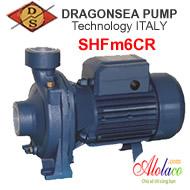 Máy bơm Dragonsea SHFm6CR 1,5HP họng 114