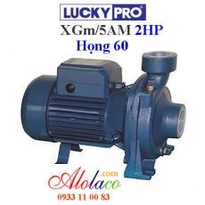 Máy bơm Lucky Pro 2Hp họng 60