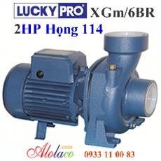 Máy bơm Lucky Pro 2Hp họng 114